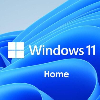 Microsoft Windows 11 Home -1 PC
